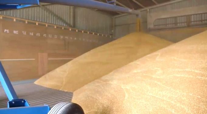 Элеватор это высокотехнологический зерноприемный комплекс