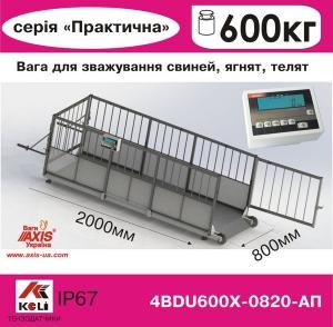 Весы для свиней 4BDU600Х-0820-П Практический