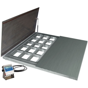WPT/4 600 H6/Z Stainless Steel Platform Scales, pit version