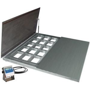 WPT/4 600 H7/Z Stainless Steel Platform Scales, pit version