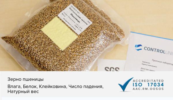 Образцы зерна пшеницы с показателями качества для настройки калибровки экспресс анализаторов в зерновой лабортатории