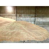 Температурный контроль зерна при хранении щуп зерновой ДТ-20