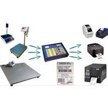 ВПД608Е-Т с принтером (Платформенные товарные весы)