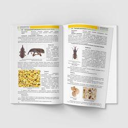 Пример страницы 34-35