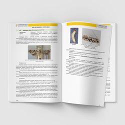 Пример страницы 106-107